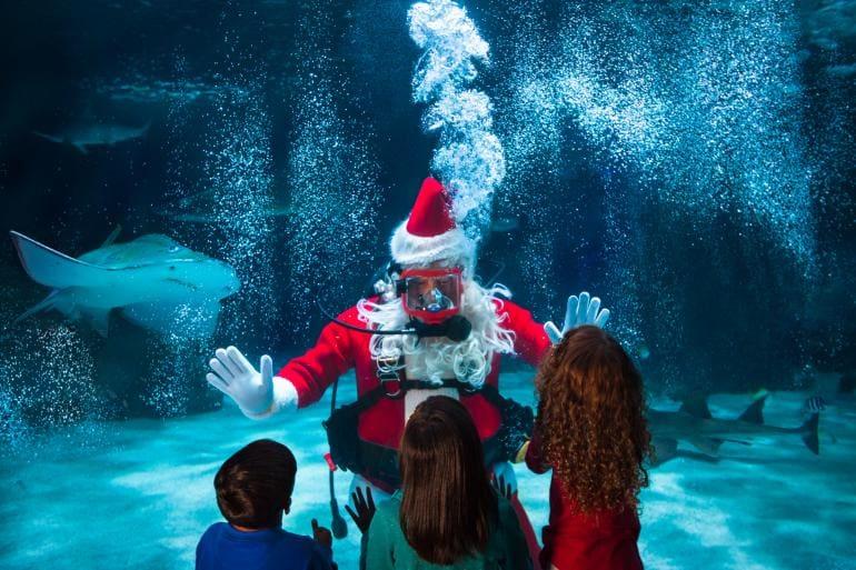 Water Wonderland with Scuba Santa, Source: Cincinnatiusa.com